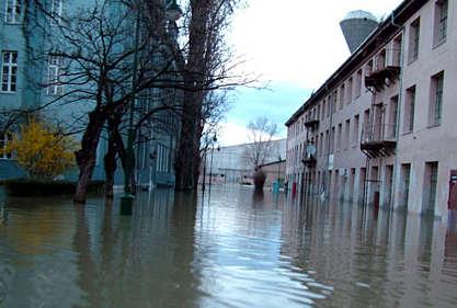 árvíz városban